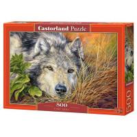 Пазл 500 Волчья грусть B-53285 Castor Land