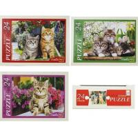 Пазл 24 Котята в цветах П24-0622