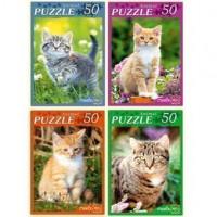 Пазл 50 Самые милые котята П50-5945