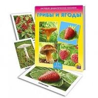 Дидактический материал Грибы и ягоды ПД-7215
