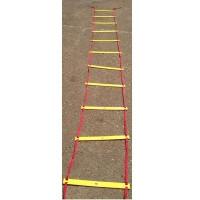 Лестница координационная 12 ступ. У792