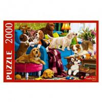 Пазл 2000 Игривые щенки Ф2000-3699