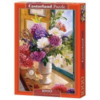 Пазл 1000  С-104444 Castor Land