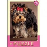 Пазл 260 Забавный щенок П260-1182