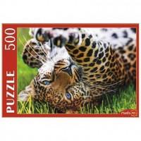 Пазл 500 Леопард на траве ГИП500-0623