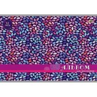 Альбом д/рис. 32 л. Разноцветные зернышки С0551-40