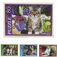 Пазл 80 Прелестные котята П80-0137