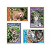 Пазл 100 Ласковые котята П100-5964