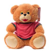 Медведь маленький в футболке См-659-5